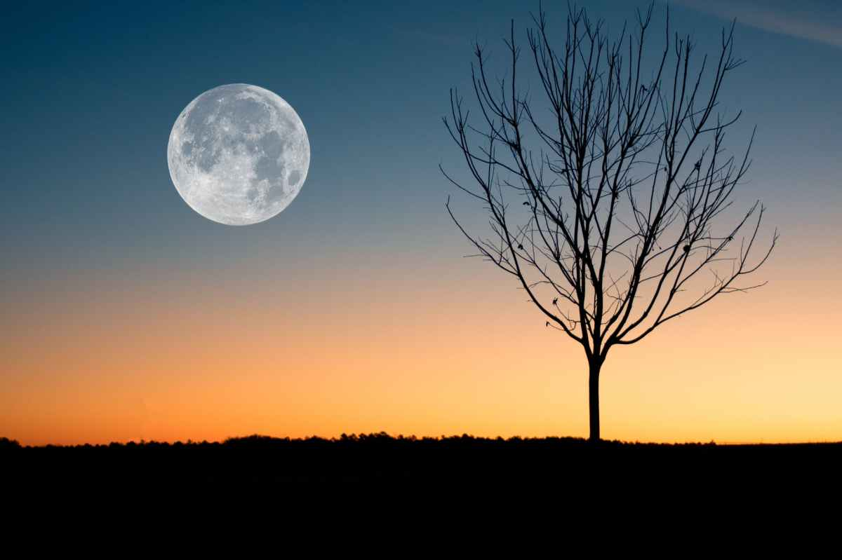 Once in a bluemoon!!!
